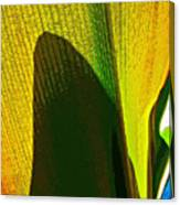 Plant Art 1 Canvas Print