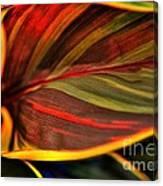 Plant Leaf Canvas Print