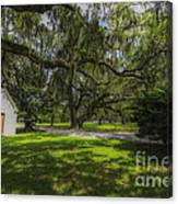 Plantation Grounds Canvas Print