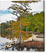 Planted By The Water Canvas Print