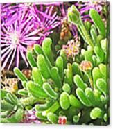 Plants Flowers Canvas Print