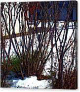 Plantscape2 2009 Canvas Print