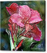 Plastic Wrapped Pink Flower By Diana Sainz Canvas Print