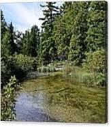 Platte River Beauty Canvas Print