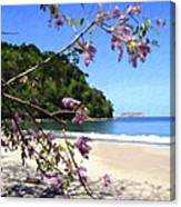 Playa Espadillia Sur Manuel Antonio National Park Costa Rica Canvas Print