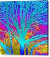 Playful Colors 4 Canvas Print