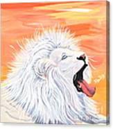Playful White Lion Canvas Print