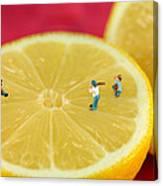 Playing Baseball On Lemon Canvas Print