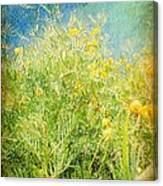 Playing In The Breeze Canvas Print