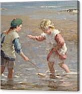 Playing In The Shallows Canvas Print