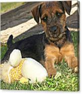 Playmates - Puppy With Toy Canvas Print