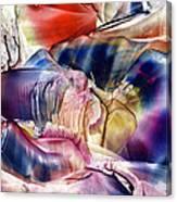 Pleiades Above Canvas Print
