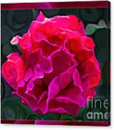 Plentiful Supplies Of Pink Peony Petals Abstract Canvas Print