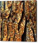 Plenty Of Small Dried Fishes On A Stack Canvas Print