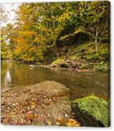 Plessey Woods And The River Blyth Canvas Print