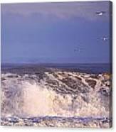 Plum Island Waves Canvas Print