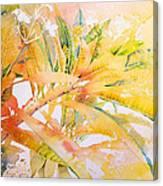 Plumeria Fireworks Canvas Print