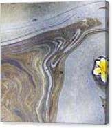 Plumeria In Oil Slick- Uss Arizona Memorial Shipwreck Site Canvas Print