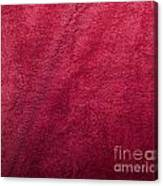 Plush Red Texture Canvas Print
