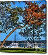 Plymouth Harbor In Autumn Canvas Print