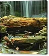 Poconos Cascades Canvas Print