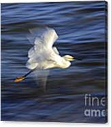 Poetry In Motion, Malibu California Canvas Print