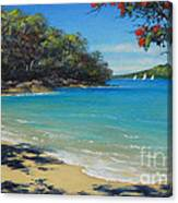Pohutukawa Nz - Beach And Rangitoto  Canvas Print