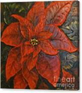 Poinsettia/ Christmass Flower Canvas Print