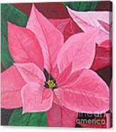 Poinsettia Canvas Print