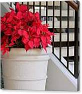 Poinsettias By The Stairway Canvas Print