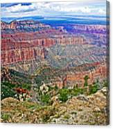 Point Imperial 8803 Feet On North Rim Of Grand Canyon National Park-arizona   Canvas Print