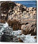 Point Lobos Coast 2 Canvas Print