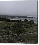 Point Lobos National Park Canvas Print