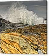 Point Lobos Wave Canvas Print
