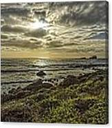 Point Piedras Blancas Sunset 1 Canvas Print