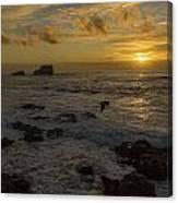 Point Piedras Blancas Sunset Canvas Print
