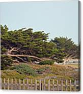 Point Pinos Lighthouse Pacific Grove California Canvas Print