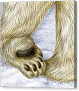 Polar Bear Paw Canvas Print