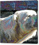 Polar Bear With Enameled Effect Canvas Print