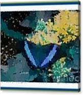 Polka Dot Butterfly Blue Canvas Print