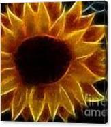 Polka Dot Glowing Sunflower Canvas Print