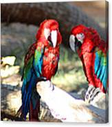 Polly And Pauly Canvas Print