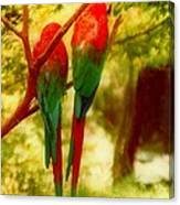 New Orleans Polly Wants Two Crackers At New Orleans Louisiana Zoological Gardens  Canvas Print
