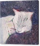 Poloma Sleep2 Canvas Print