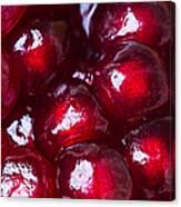 Pomegranate Closeup Canvas Print