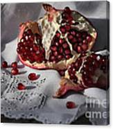 Pomegranate  Seed Canvas Print