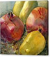 Pomegranates And Pears Canvas Print
