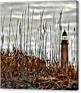 Ponce Inlet Lighthouse In Sea Grass Canvas Print