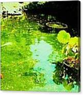 Pond 1 Canvas Print