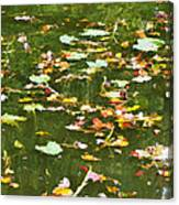 Pond 2 Canvas Print